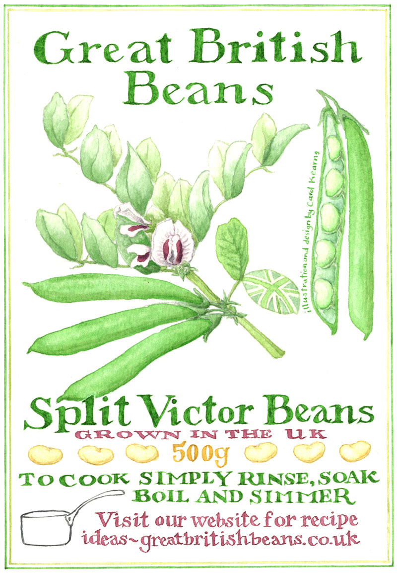 Postcard designed by Carol Kearns for the Great British Bean project
